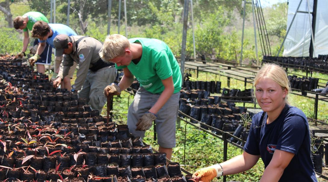 Projects Abroad Volunteers work in the greenhouse on the Galapagos Conservation Project